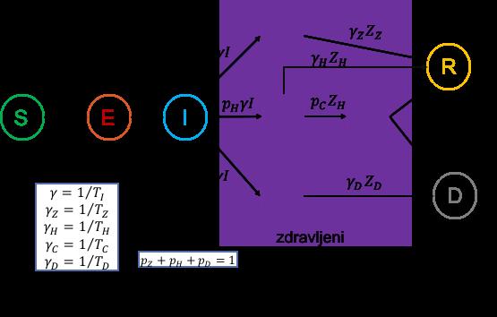 Uporabljeni model SEIR